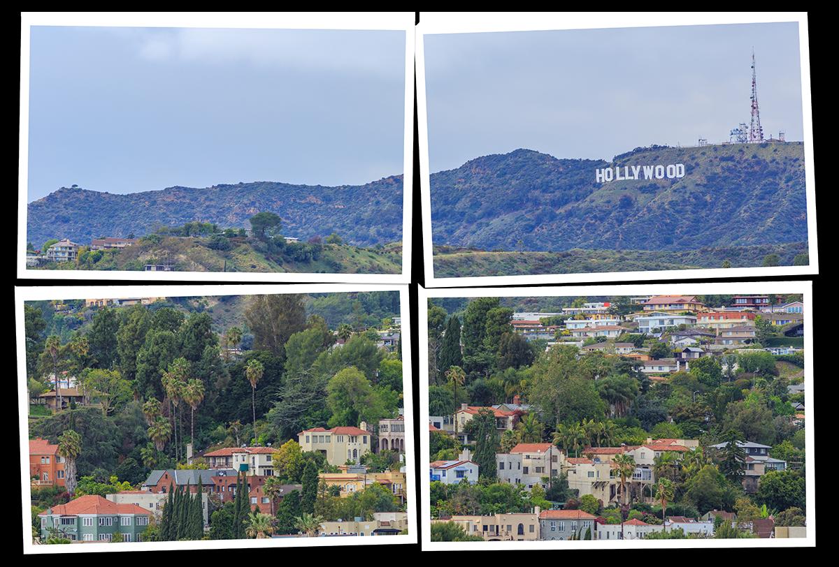 CoLA-Hollywood